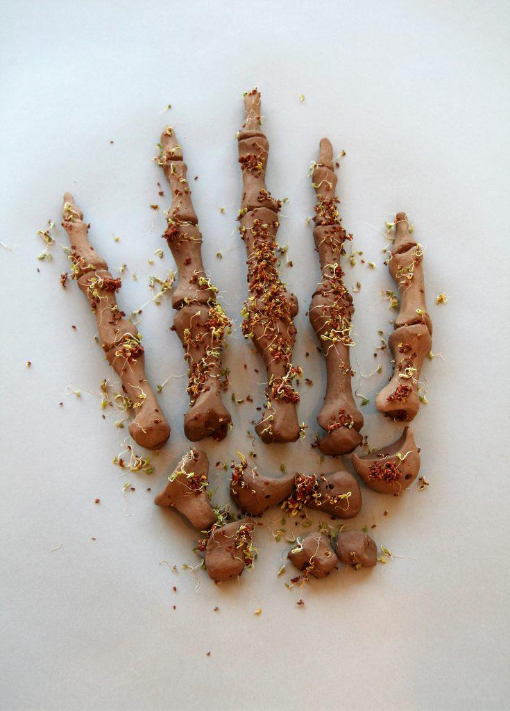 Tempus Fugit 2x20x15cm [unfired earthenware, grass seeds]